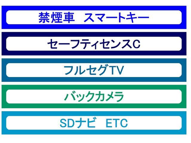フルセグTV・DVD鑑賞可能SDナビやETC、スマートキーなど装備も充実!!