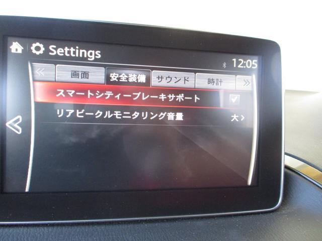 15Sセーフティクルーズパッケージ LEDヘッドライト ナビ(16枚目)