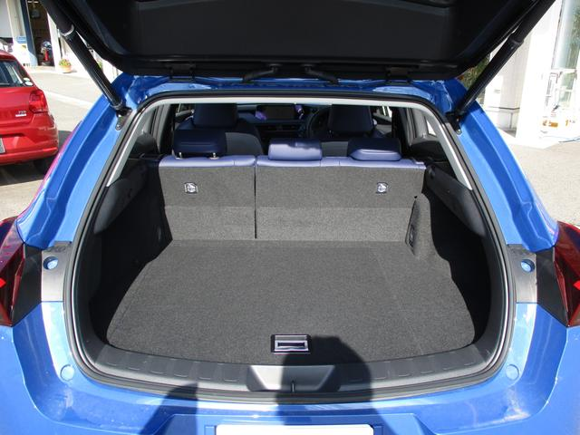 UX250h バージョンC 禁煙車 パノラミックビュー BSM PKSB 前席パワーシート LEDヘッドライト シート・ステアリングヒーター フロアマット リモートスタートベーシック(10枚目)