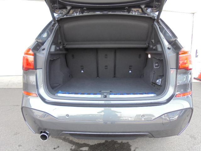 xDrive18d Mスポーツ黒革ハイラインPコンフォートP(19枚目)
