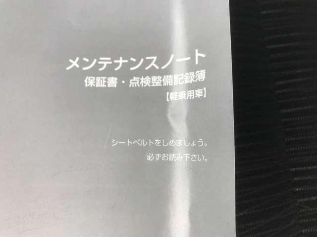 660 ハイウェイスターX メモリーナビ(20枚目)