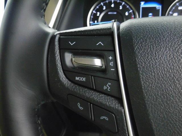 2.5G フルセグ メモリーナビ DVD再生 ミュージックプレイヤー接続可 後席モニター バックカメラ 衝突被害軽減システム ETC 両側電動スライド LEDヘッドランプ 乗車定員7人 3列シート(17枚目)