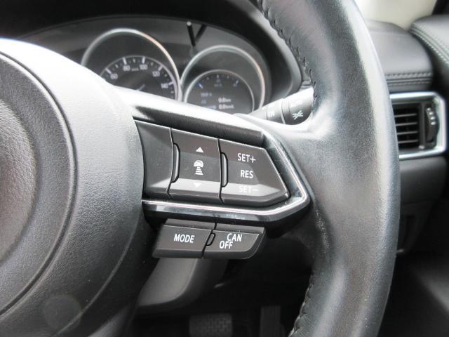 25Sプロアクティブ BOSE AWD(11枚目)