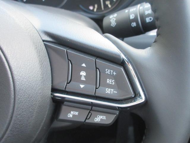 XDプロアクティブ S-PKG AWD 360°モニター 試(8枚目)