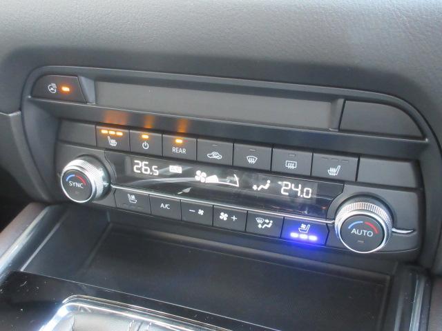 XDプロアクティブ S-PKG AWD 360°モニター 試(10枚目)