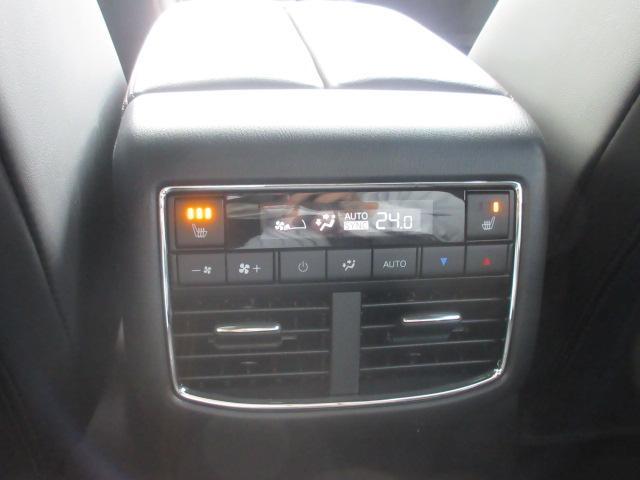 XDプロアクティブ S-PKG AWD 360°モニター 試(14枚目)