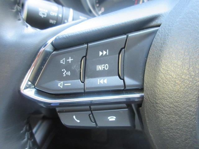 XDプロアクティブ 衝突被害軽減システム アダプティブクルーズコントロール 全周囲カメラ オートマチックハイビーム 4WD 3列シート 電動シート シートヒーター バックカメラ オートライト LEDヘッドランプ(9枚目)