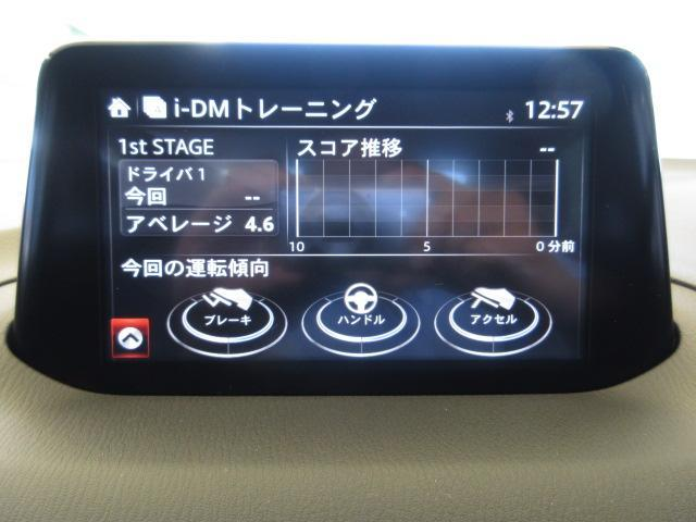 15XD プロアクティブ 6速AT DVDプレーヤー 地上デ(12枚目)