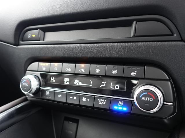 XDエクスクルーシブモードAWD 360ビュー BOSE(10枚目)
