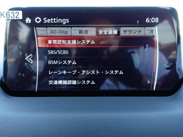 XDプロアクティブ 未使用 360ビュー 電動ハッチ(9枚目)