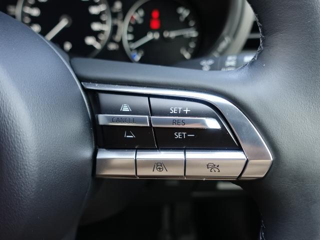 XDバーガンディ セレクション 衝突被害軽減システム アダプティブクルーズコントロール 全周囲カメラ オートマチックハイビーム 革シート 電動シート シートヒーター バックカメラ オートライト LEDヘッドランプ Bluetooth(14枚目)