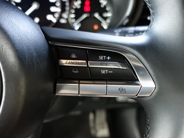 15Sツーリング 衝突被害軽減システム アダプティブクルーズコントロール 全周囲カメラ オートマチックハイビーム バックカメラ オートライト LEDヘッドランプ ETC Bluetooth(13枚目)