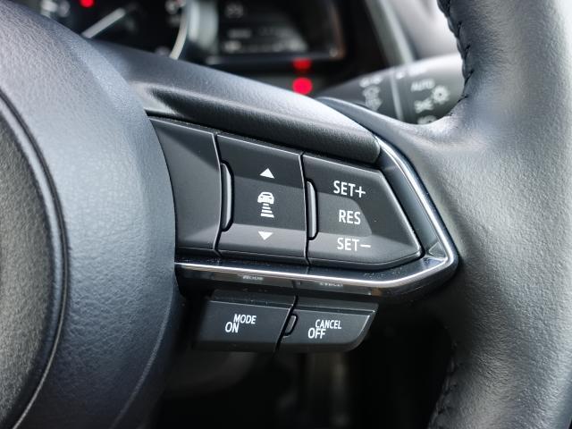 XD Lパッケージ 衝突被害軽減システム アダプティブクルーズコントロール 全周囲カメラ オートマチックハイビーム 革シート 電動シート シートヒーター バックカメラ オートライト LEDヘッドランプ ETC(13枚目)