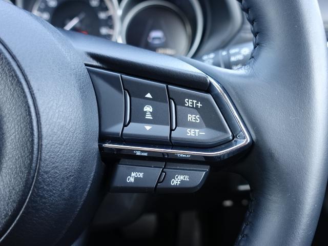 20S プロアクティブ 衝突被害軽減システム アダプティブクルーズコントロール 全周囲カメラ オートマチックハイビーム バックカメラ オートライト LEDヘッドランプ ETC Bluetooth(14枚目)