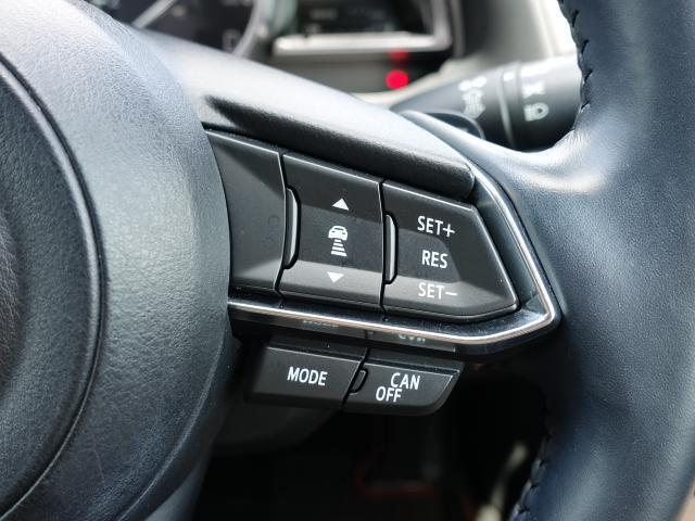 15S プロアクティブ 衝突被害軽減システム アダプティブクルーズコントロール オートマチックハイビーム 電動シート シートヒーター バックカメラ オートライト LEDヘッドランプ ETC Bluetooth(13枚目)