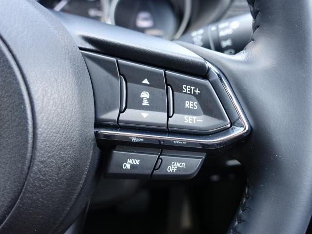 XDプロアクティブ 衝突被害軽減システム アダプティブクルーズコントロール 全周囲カメラ オートマチックハイビーム 3列シート 電動シート シートヒーター バックカメラ オートライト LEDヘッドランプ ETC(13枚目)