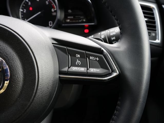15XD プロアクティブ 衝突被害軽減システム オートマチックハイビーム オートクルーズコントロール オートライト LEDヘッドランプ ETC Bluetooth(14枚目)