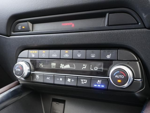 XD エクスクルーシブモード 衝突被害軽減システム アダプティブクルーズコントロール 全周囲カメラ オートマチックハイビーム サンルーフ 革シート 電動シート シートヒーター バックカメラ オートライト LEDヘッドランプ ETC(10枚目)