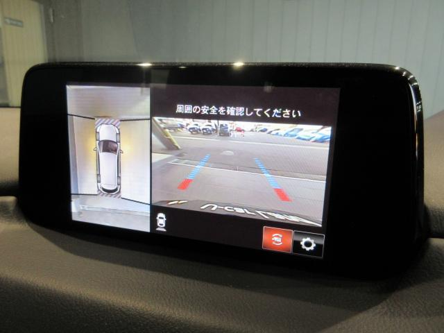 XD Lパッケージ SDナビ ETC CD DVD TV Androidauto Applecarplay(11枚目)