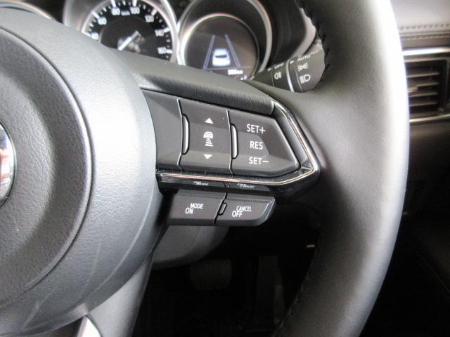 25S プロアクティブ 4WD デモアップカー BSM MRCC 360°ビューモニター LEDヘッドライト(12枚目)