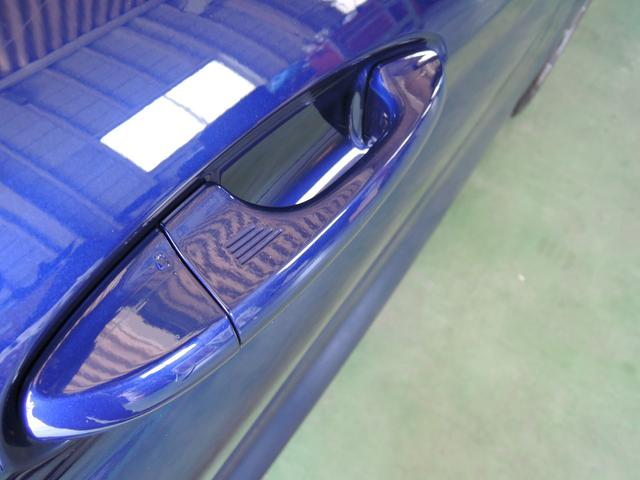 ST LineX Ecoboost 新車(18枚目)