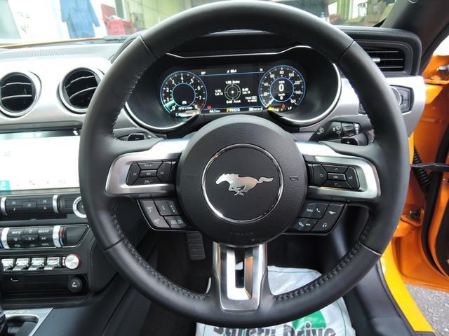 V8 GT Fastback 2019年モデル(14枚目)