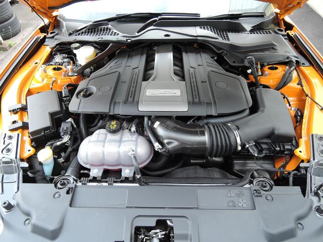 V8 GT Fastback 2019年モデル(32枚目)