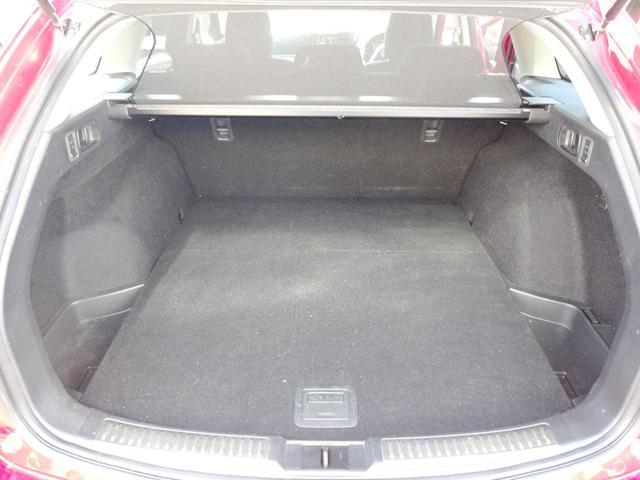 20S 20S 車高調  WORK 20インチアルミ 特別塗装   クルコン スマートキー バックモニター SCBS フルセグTV HDDナビ ETC(22枚目)