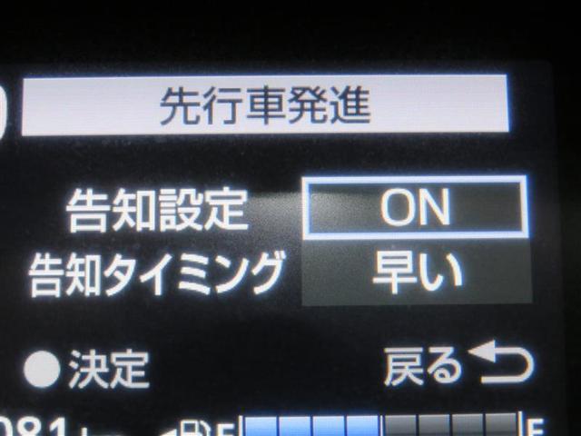 ハイブリッドG(12枚目)