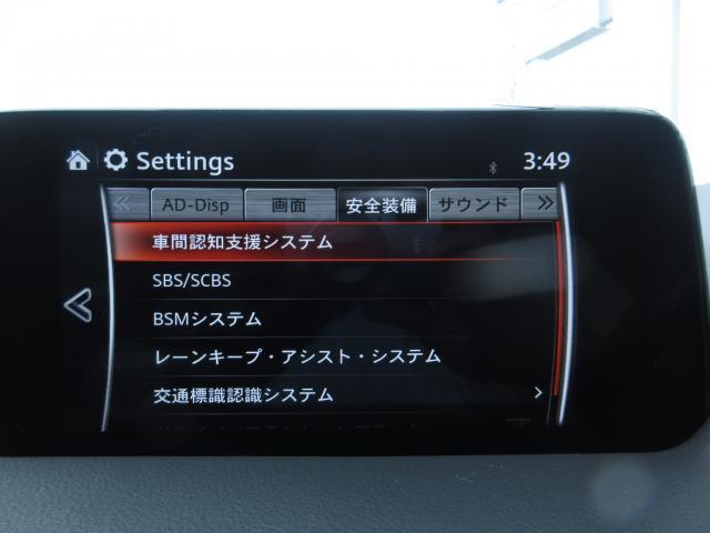 XD Lパッケージ(9枚目)
