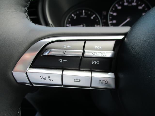 XD プロアクティブT-S 登録済未使用車(11枚目)