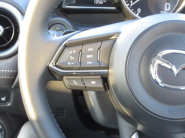15S ホワイト コンフォート 衝突被害軽減システム アダプティブクルーズコントロール 全周囲カメラ オートマチックハイビーム 革シート シートヒーター バックカメラ オートライト LEDヘッドランプ Bluetooth(19枚目)