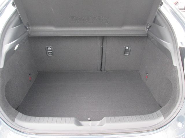 大型のスーツケースや、一般的なベビーカーが積み込める実用的な広さを備えたラゲッジルームです。後部座席を倒せばたくさんの荷物を積めるフラットなラゲッジスペースになります。