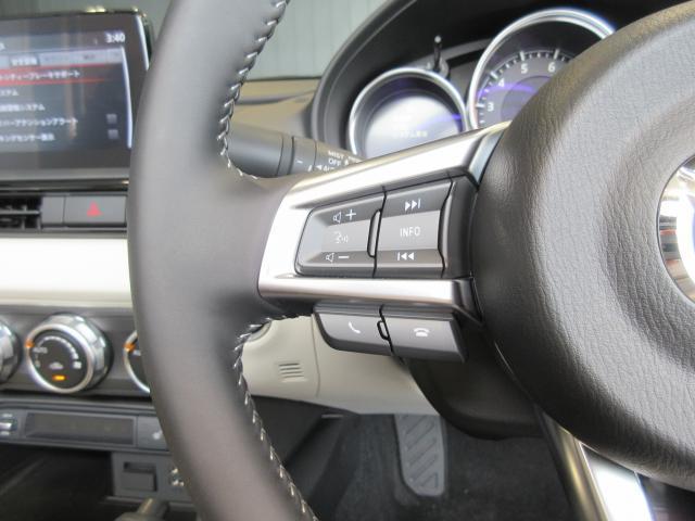 ハンドルの右手部分にはクルーズコントロール、左手部分にはオーディオコントロールを装備