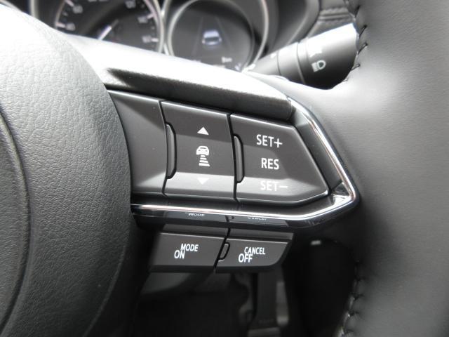 XD Lパッケージ 登録済み未使用車 360°ビューモニター(12枚目)