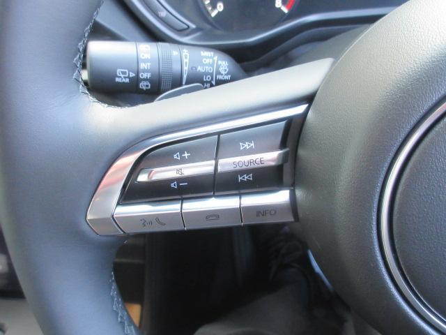 ベースグレード 衝突被害軽減システム アダプティブクルーズコントロール 全周囲カメラ オートマチックハイビーム 電動シート シートヒーター バックカメラ オートライト LEDヘッドランプ Bluetooth(12枚目)