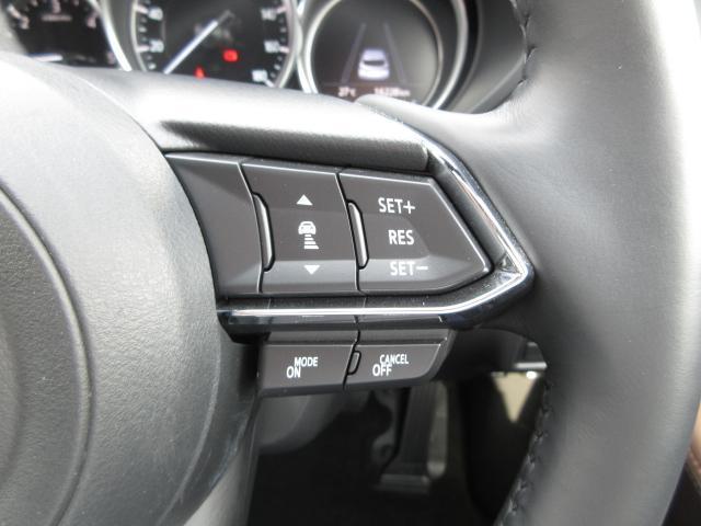 XDプロアクティブ 衝突被害軽減システム アダプティブクルーズコントロール 全周囲カメラ オートマチックハイビーム 3列シート 電動シート シートヒーター バックカメラ オートライト LEDヘッドランプ ワンオーナー(10枚目)