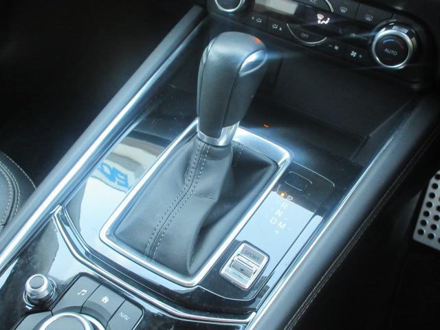 25S Lパッケージ AWD(9枚目)