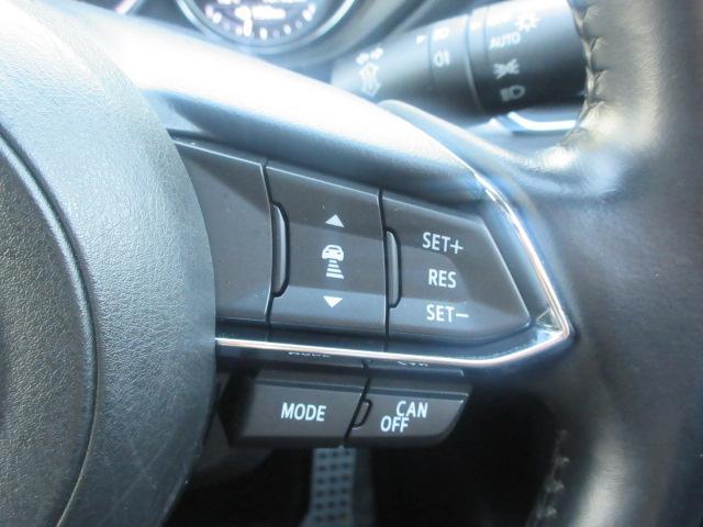 25S Lパッケージ AWD(13枚目)