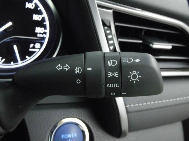 WS メモリーナビ ミュージックプレイヤー接続可 バックカメラ 衝突被害軽減システム ETC ドラレコ LEDヘッドランプ フルエアロ 記録簿 アイドリングストップ(19枚目)