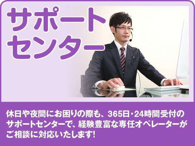 カスタムG ドラレコ 両側電動スライド バックカメラ(31枚目)