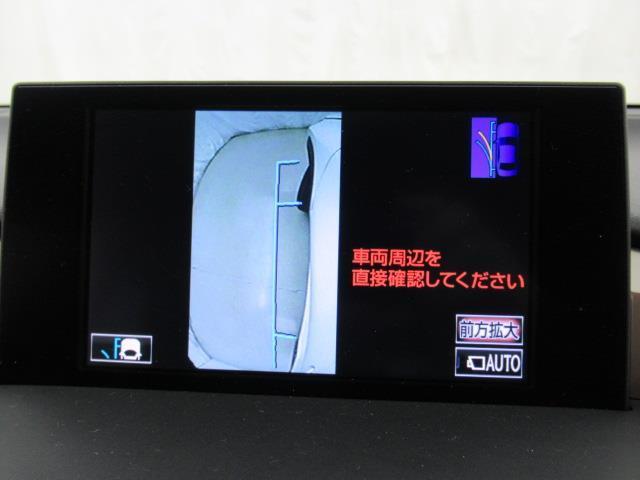 NX300h Iパッケージ 革シート バックカメラ(7枚目)