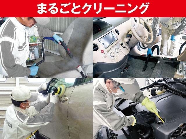 Z 衝突被害軽減ブレーキ バックモニター スマートキ-(22枚目)