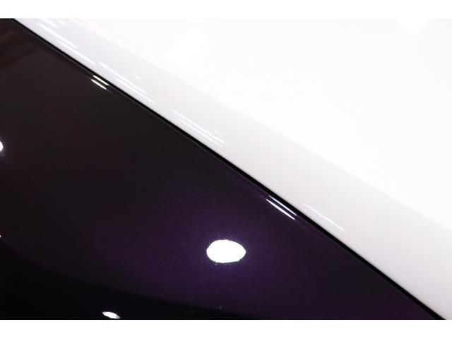 オプションボディカラー:濃紫(Damson)