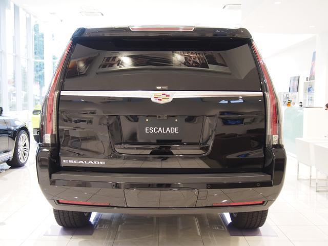 プラチナム ディーラー車 新車未登録(3枚目)