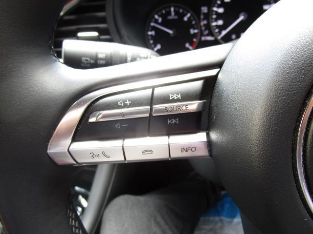 XDバーガンディ セレクション 衝突被害軽減システム アダプティブクルーズコントロール 全周囲カメラ オートマチックハイビーム 革シート 電動シート シートヒーター バックカメラ オートライト LEDヘッドランプ ETC(15枚目)