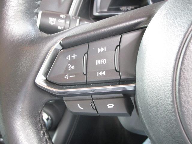 XD プロアクティブ 衝突被害軽減システム アダプティブクルーズコントロール オートマチックハイビーム バックカメラ オートライト LEDヘッドランプ Bluetooth ワンオーナー(16枚目)