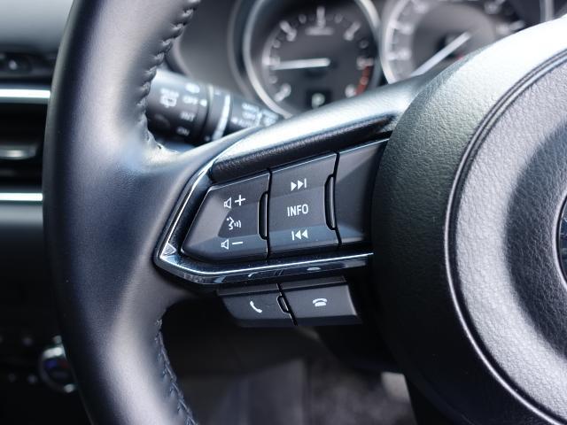 XD プロアクティブ 衝突被害軽減システム アダプティブクルーズコントロール オートマチックハイビーム バックカメラ オートライト LEDヘッドランプ ETC Bluetooth ワンオーナー(17枚目)