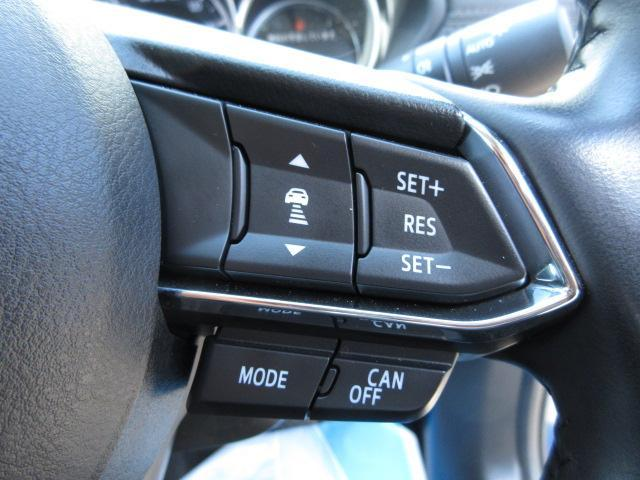 先行車に追従可能なレーダークルーズを採用しています。