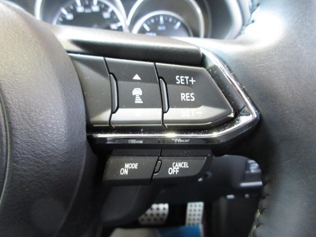 20S プロアクティブ 衝突被害軽減システム アダプティブクルーズコントロール 全周囲カメラ 電動シート シートヒーター バックカメラ オートライト LEDヘッドランプ ETC Bluetooth 電動リアゲート(13枚目)
